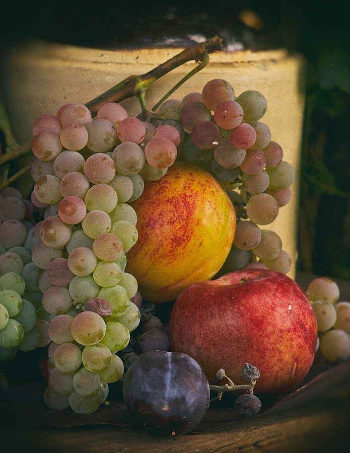Grapes & Plums from Walla Walla | LEICA APO-SUMMICRON-M 75MM F/2 ASPH <br> Click image for more details, Click <b>X</b> on top right of image to close