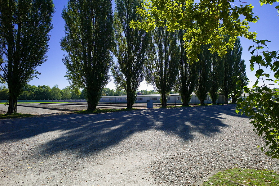 Trees were planted by the prisoners at Dachau | LEICA 21MM SUPER-ELMAR-M F/ 3.4 ASPH LENS <br> Click image for more details, Click <b>X</b> on top right of image to close