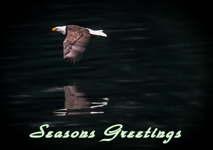 Seasons Greetings | LENS MODEL NOT SET <br> Click image for more details, Click <b>X</b> on top right of image to close